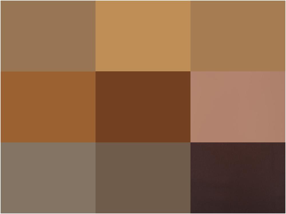 brown color series light to dark  - 经典棕系发色,气质与流行不退!