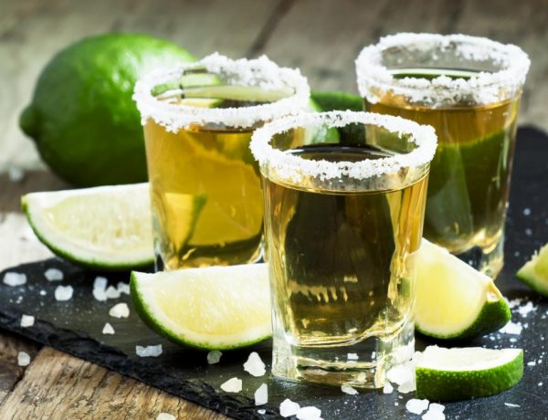the 10 important things about tequila BIG 600x460 - 墨西哥之酒,十个关于Tequila的背景故事!