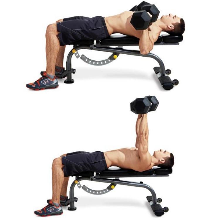 men fitness lose weight plan dumbbell bench press - 塑身甩脂,重拾健壮线条!