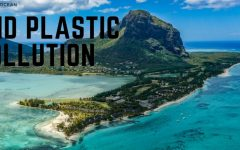 end plastic pollution save the ocean and planet earth day 2018 BIG  240x150 - 关爱地球,无塑料生活你能做到吗?