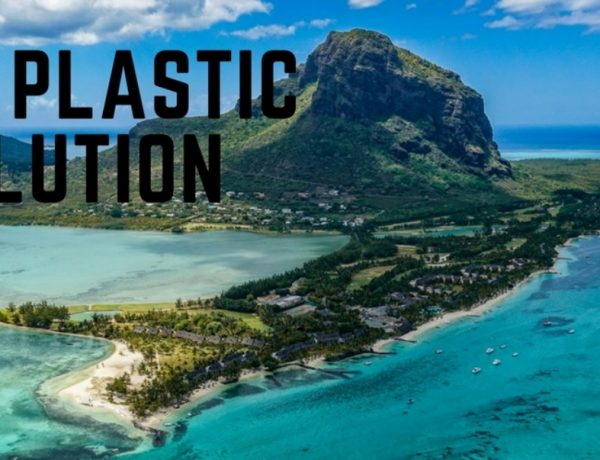 end plastic pollution save the ocean and planet earth day 2018 BIG  600x460 - 关爱地球,无塑料生活你能做到吗?