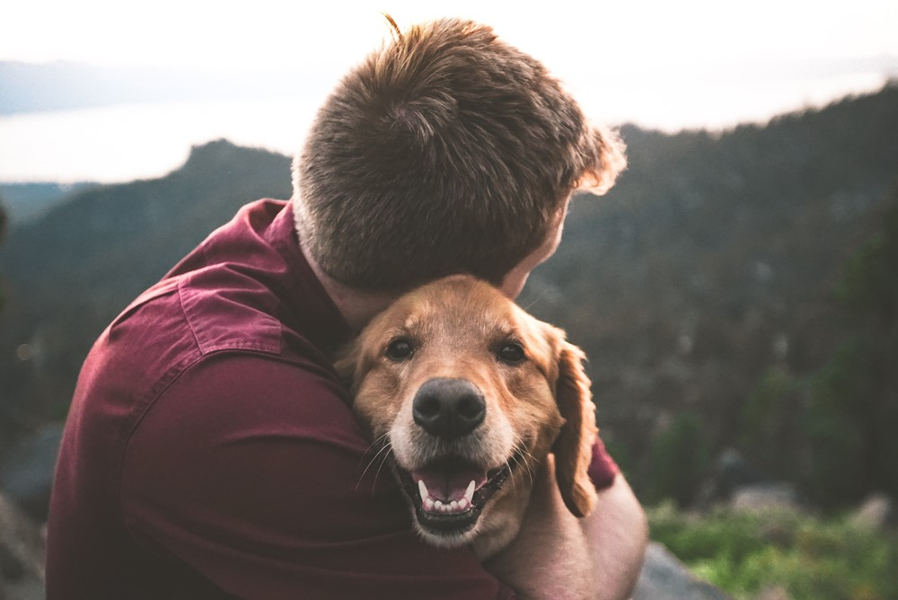 20 Simple Ways to Hack Your Happiness puppy - 捉住幸福的20个方法(有科学根据) !