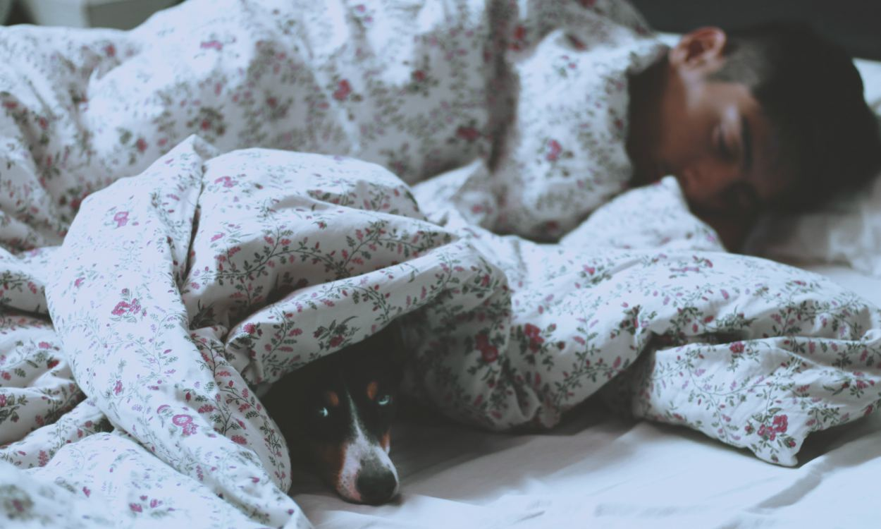 It is good to Sleep on the Floor Cover 1 - K's HEALTH Tips:学日本人在地板上睡觉,其实更健康?