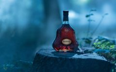 The Seven Worlds' of Hennessy X.O cover 240x150 - The Seven Worlds of Hennessy X.O 揭开7大酿酒精髓