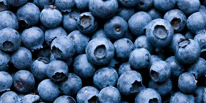 blueberry - 增强免疫力的7种超级食物
