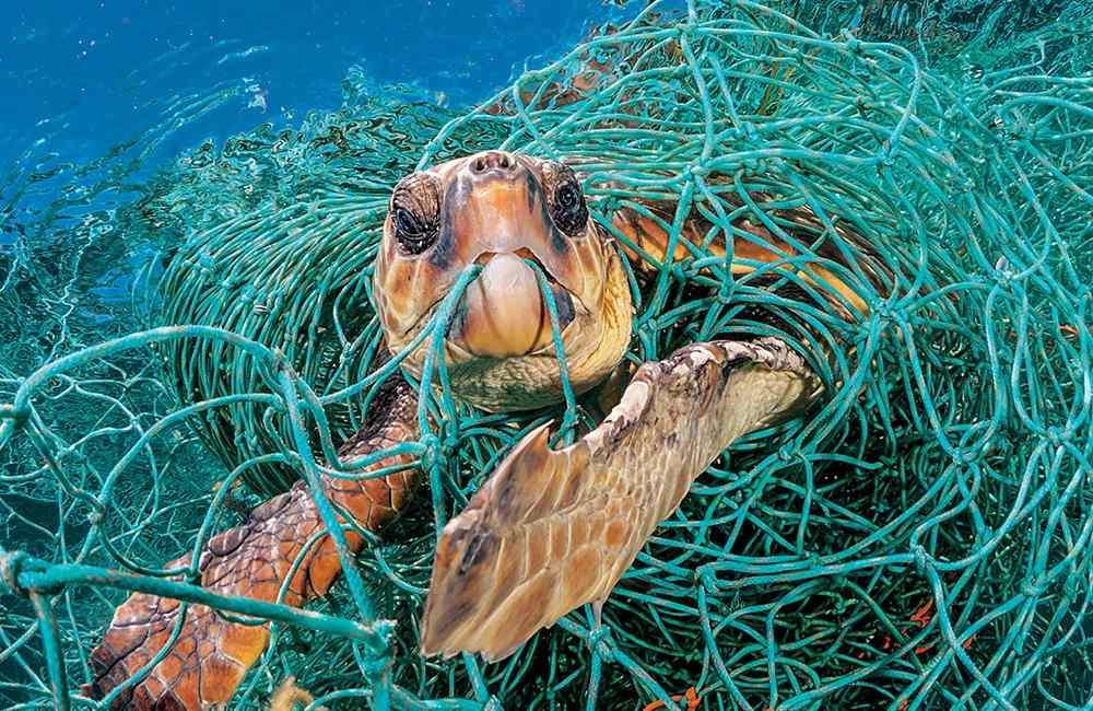 Planet or plastic 003 - 唤醒全球塑料废物危机意识: Planet or Plastic? 摄影展