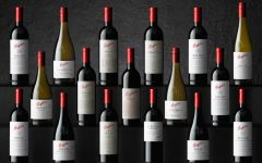 penfolds collection 2020 001 240x150 - 时光淬炼佳酿: Penfolds 2020 珍藏系列葡萄酒