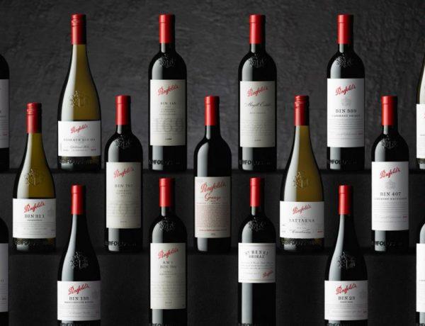 penfolds collection 2020 001 600x460 - 时光淬炼佳酿: Penfolds 2020 珍藏系列葡萄酒