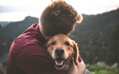 20 Simple Ways to Hack Your Happiness puppy 240x150 - 捉住幸福的20个方法(有科学根据) !